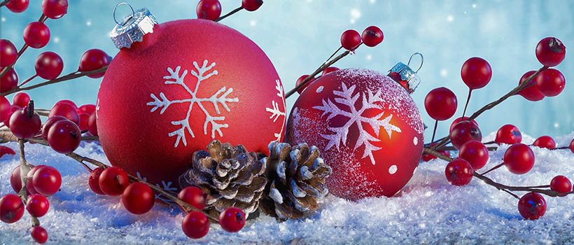 ООО «Переводчик» поздравляет с наступающим Новым годом!